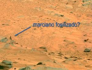 humanoide marciano 02