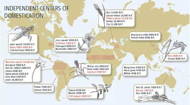 Pueblos en distintas partes de la Tierra empiezan a cultivar. Science Vol 316 29 Junio 2007