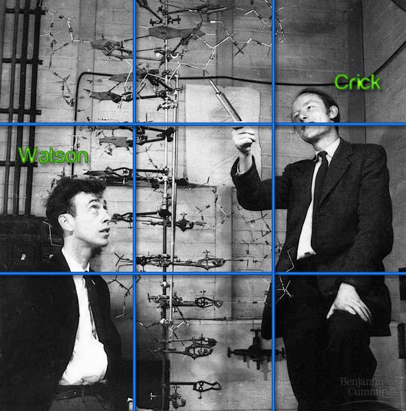Watson y Crick Photo