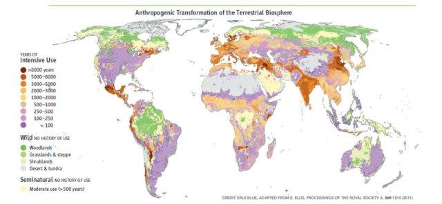 biosfera-terrestre
