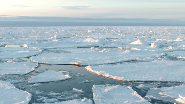 intro-hielo-artico